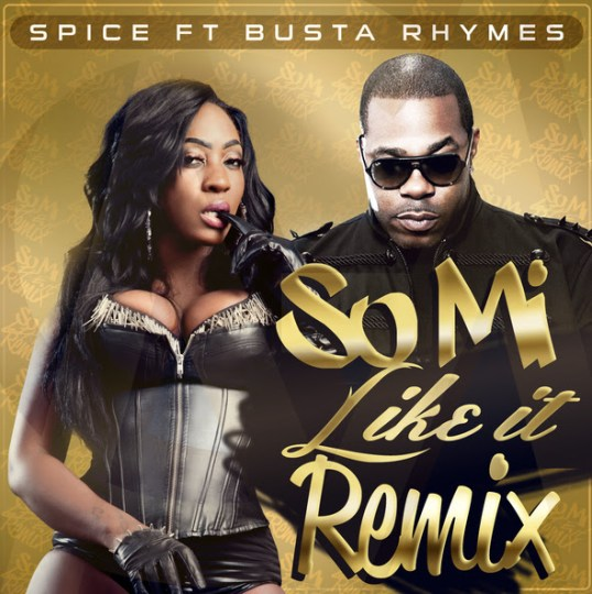Spice ft. Busta Rhymes - So Mi Like It (Remix)