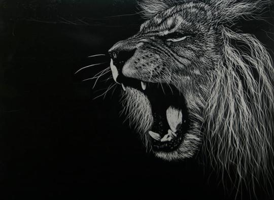 marvelous-heart-of-a-lion
