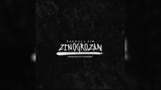Žaegulj ZIM & Flowdeep - Grob