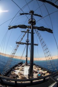 Black Pearl Sails