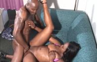 BLACK PORN ACTRESS PRESENT HONEY COMB