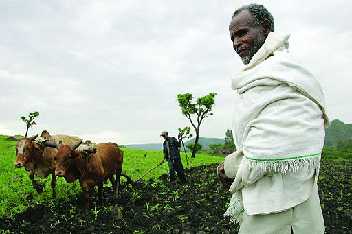 Farmer in Southwest Ethiopia. (Stevie Mann/CCPL 2.0)