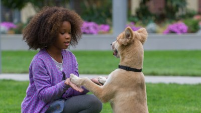 Quvenzhané Wallis, who was nominated for an Oscar for her role in Beasts of the Southern Wild, plays little orphan Annie in the new film adaptation of the 1977 musical. (Sony Pictures Entertainment)