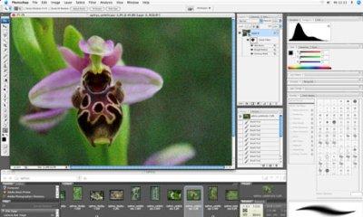 Adobe Photoshop (Peter Zschunke/AP Photo)
