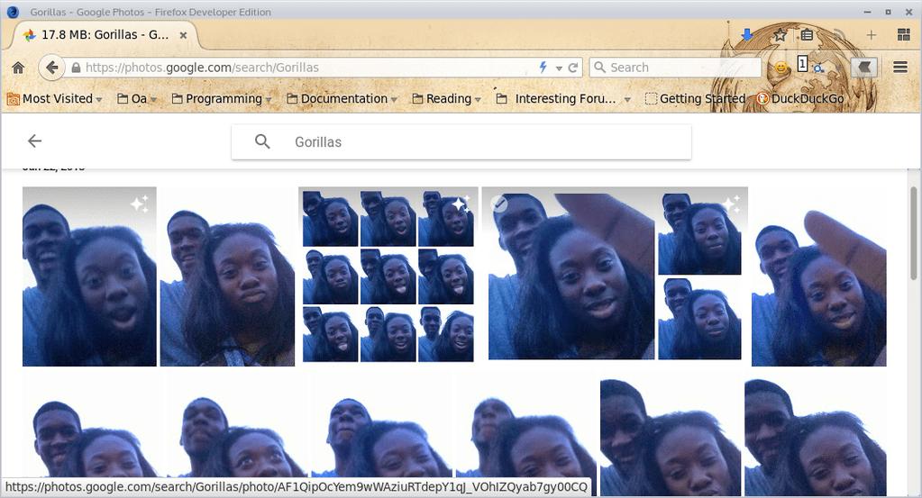"Google ""Gorillas"""