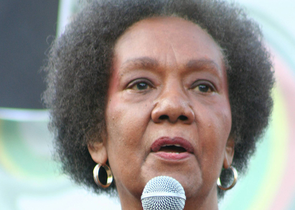 """Dr. Frances Cress Welsing is noted for her """"Cress Theory of Color Confrontation,"""" which explores the practice of White supremacy. This photograph was taken during 10th Annual National Black L.U.V. Festival in Washington D.C. on September 21, 2008. (Elvert Xavier Barnes Photography/Creative Commons)"""