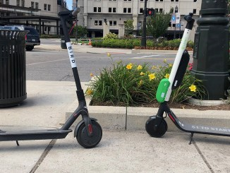 Bird and Lime scooters side by side.