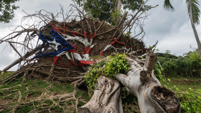 Critics, pundits and academics say it's impossible to ignore the role race plays in Trump's treatment of Puerto Ricans. Photo: SAN JUAN, PR - MARCH 4, 2018: Painted USA flag on uprooted tree from Hurricane Maria in San Juan, Puerto Rico. / iStockphoto / NNPA