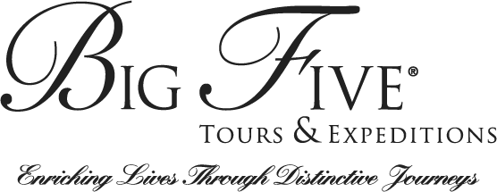 Big Five Tours Logo