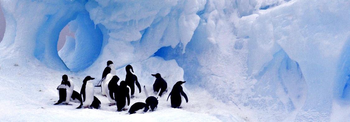 Calentamiento global: ¿qué es #below2C y por qué es tan importante?