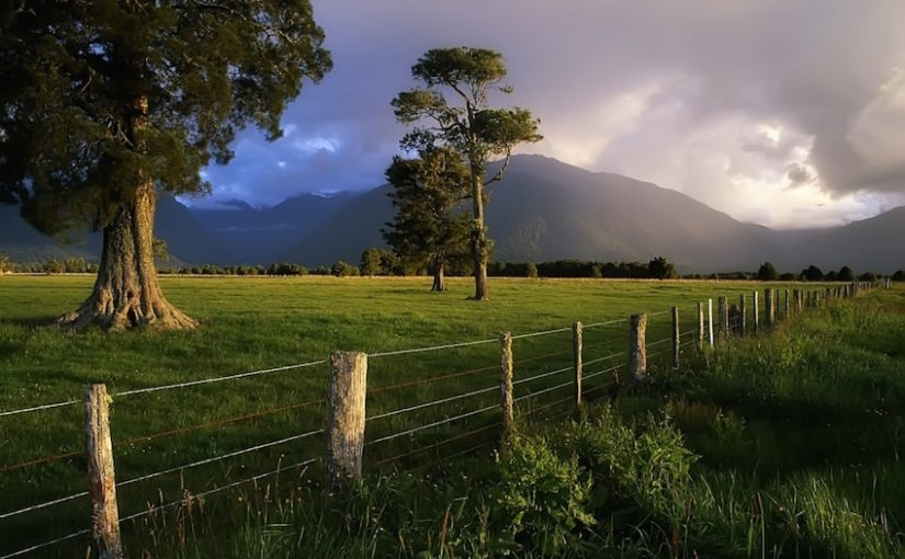New Zealand is a country for Fans of Adventure, That Is: Travel to New Zealand