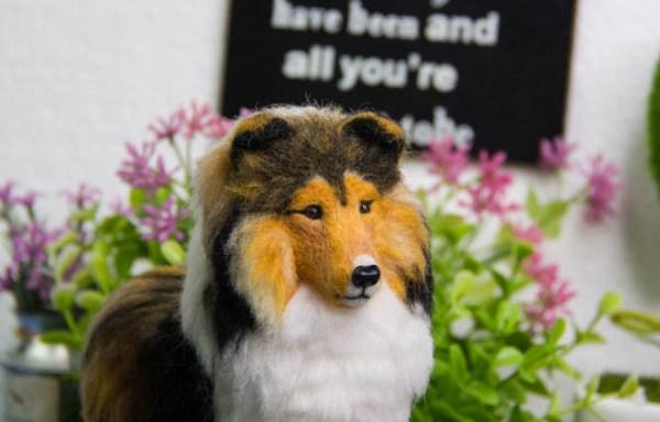 [Ready Made]: Shetland Sheepdog Sable