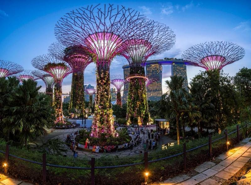 supertrees, gardens by the bay, singapura