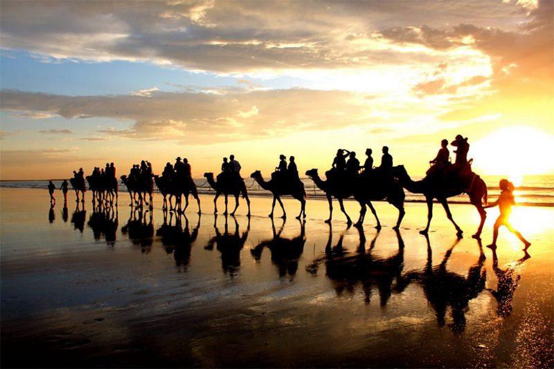 camel ride broome, australia