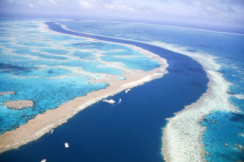 great barrier reef tampak dari udara