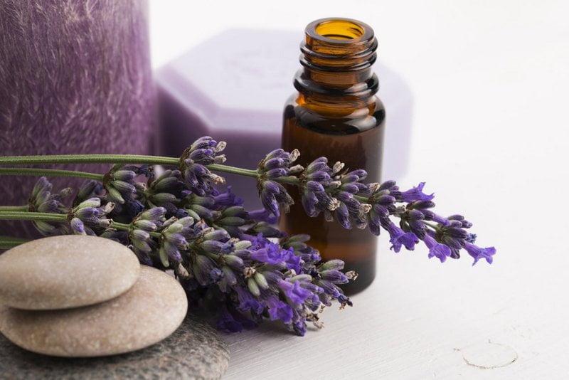 lavender essential oil untuk mengatasi depresi
