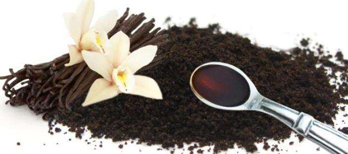 vanili bubuk bahan baku untuk membuat vanilla oil