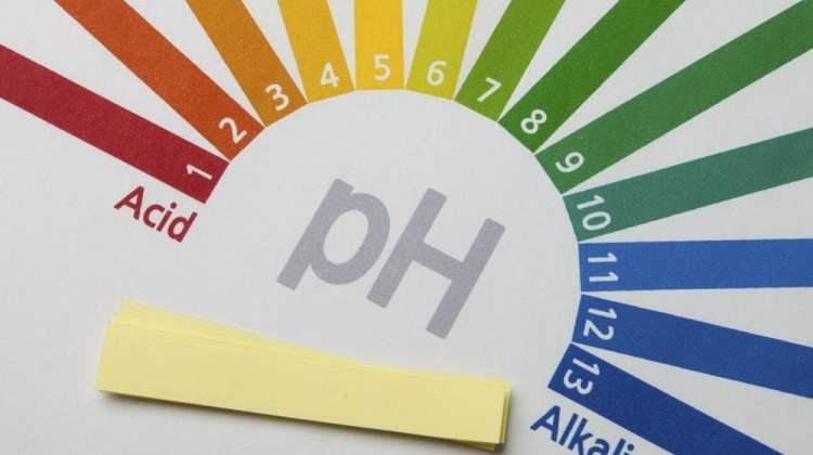 pengaruh pH pada kinerja enzim
