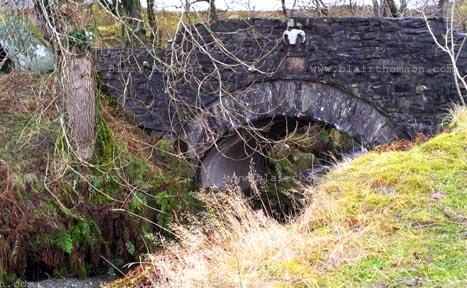 skull bridge