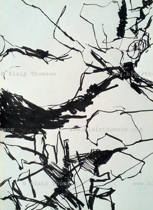 Tectonics 2 (www.blairthomson.com)
