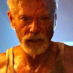 Don't Breathe 2 - Darum fehlt Rocky im Sequel: Jane Levy redet Klartext - BlairWitch.de 💥😭😭💥