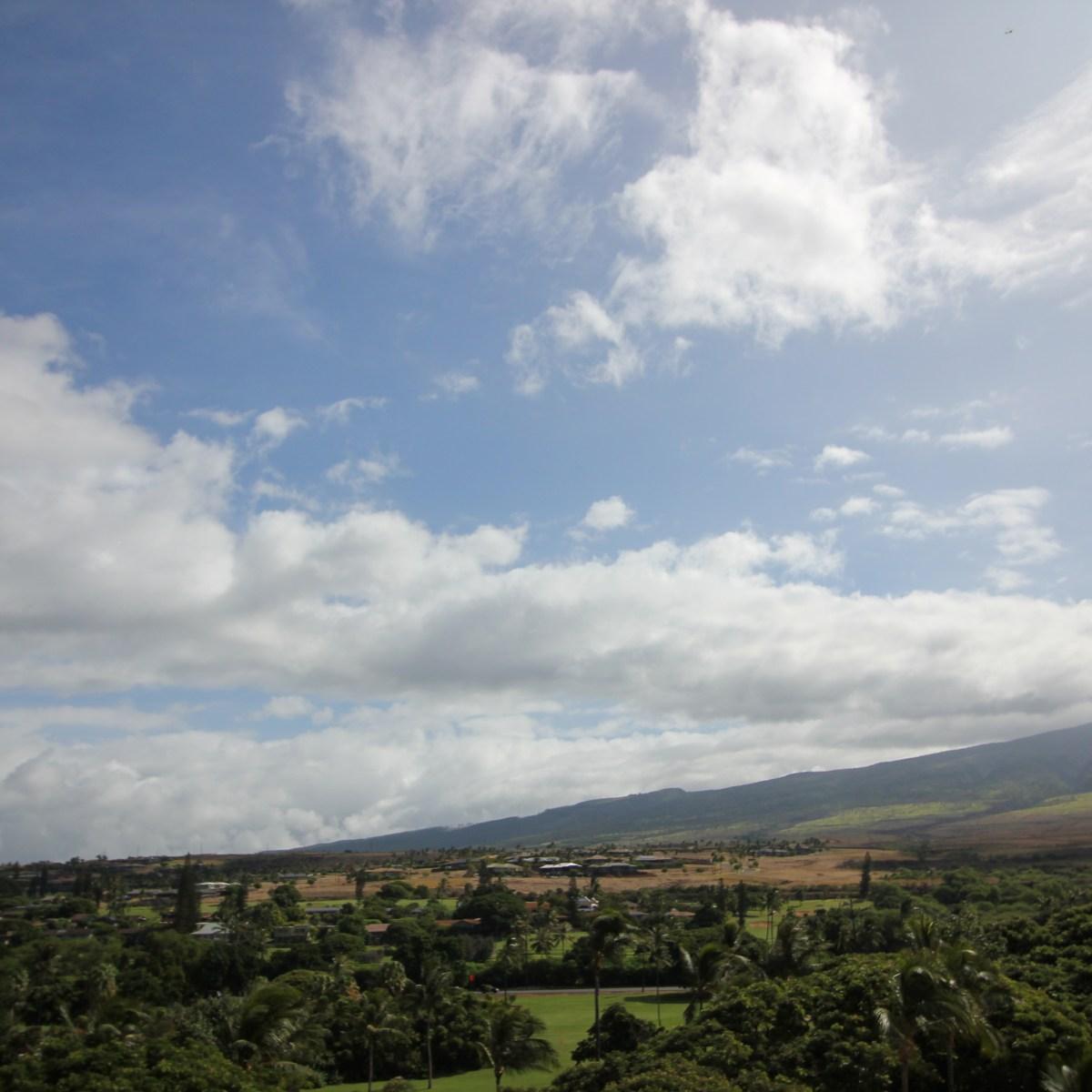 Maui Hawaii Hyatt