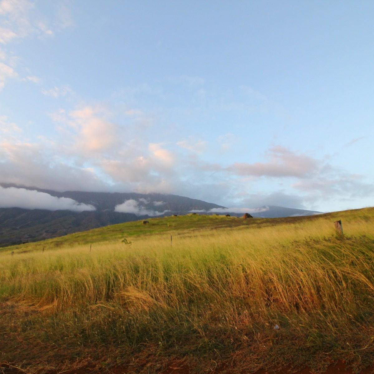 Maui Hawaii Hana Highway