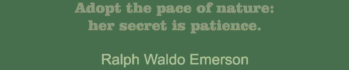Blanchard Quote Ralph Waldo Emerson