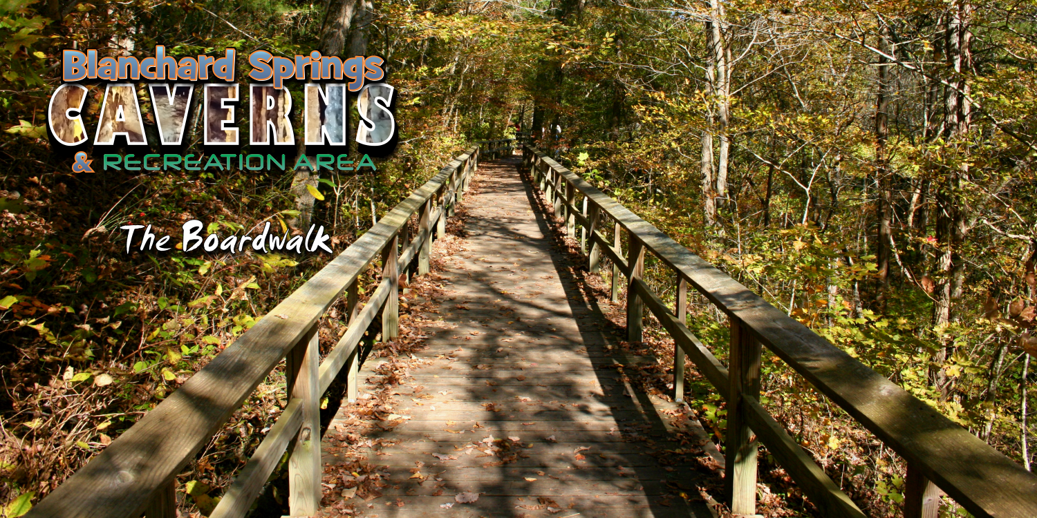 Boardwalk at Blanchard Springs