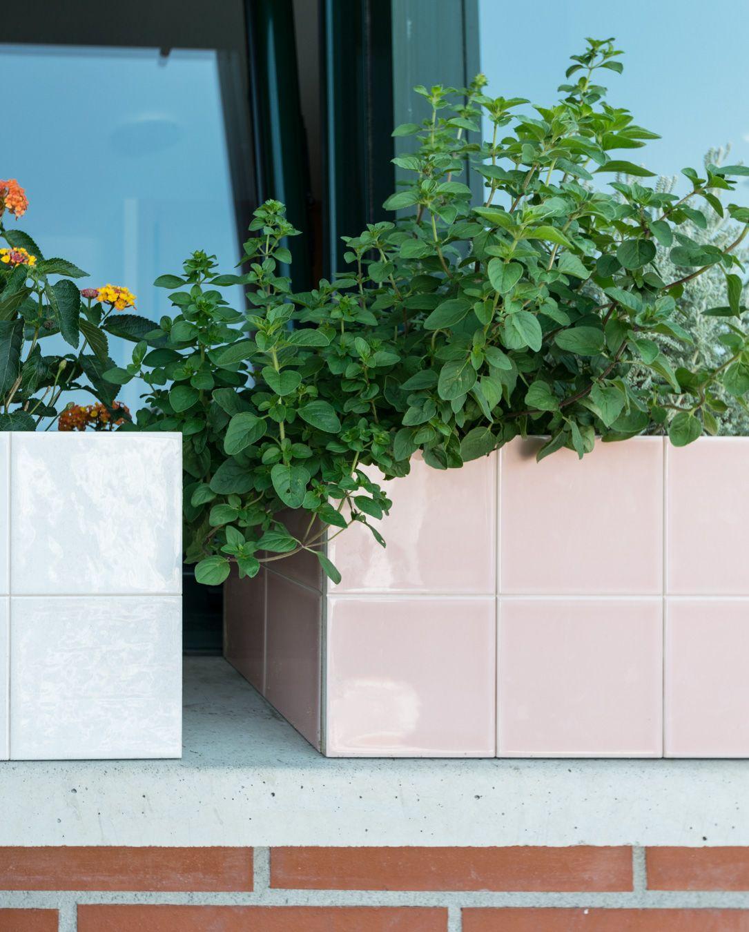 Lantana y hierbabuena con macetero de Porcelanosa White&Colors