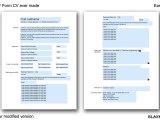 First PDF Form CV Ever Made