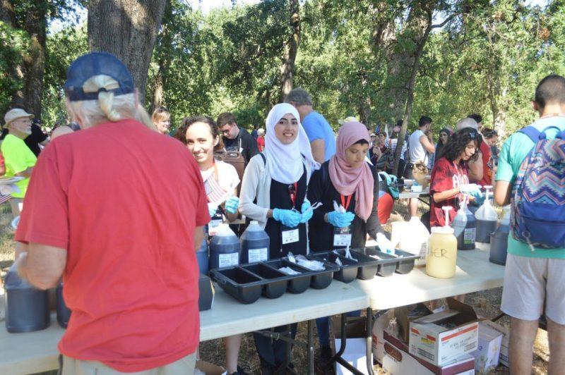 Afaf Asas in the US volunteering
