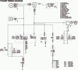 Stock wiring diagrams | Blasterforum