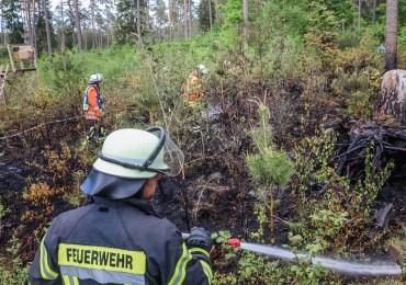 Über 200 qm Waldboden in Brand! - Einsatzkräfte löschen im Landkreis Harburg Waldbrand