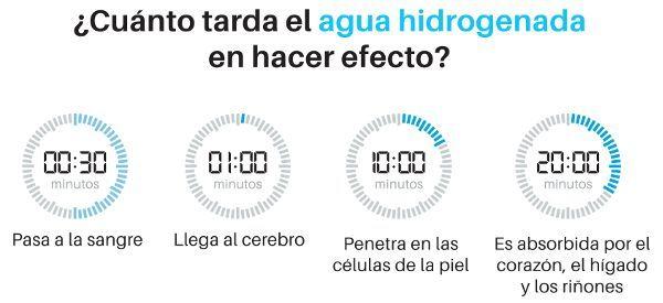 Tiempo que tarda en hacer efecto el agua hidrogenada