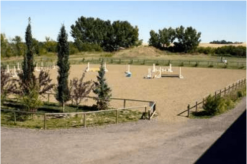 Blazing Hearts Ranch Outdoor Sand Ring