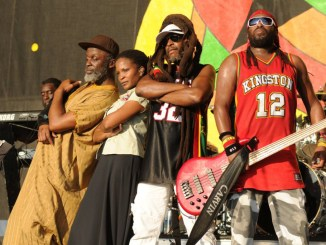 Steel Pulse Band