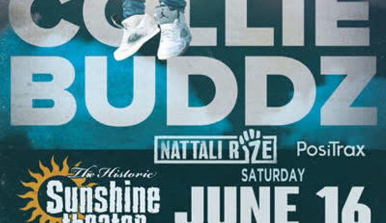 collie buddz flyer