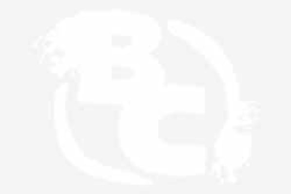 Image result for blake bortles 600X400