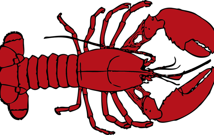 lobster would you rather funny mom book