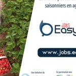 Easy-Agri_annonce-job-saisonniers-agriculture-669×272