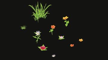 eric-soares-flowers