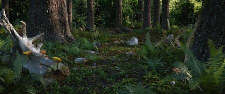 thomas-berard-forest2