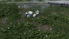 carl-roe-new-pbr-cloudy-grass-pond