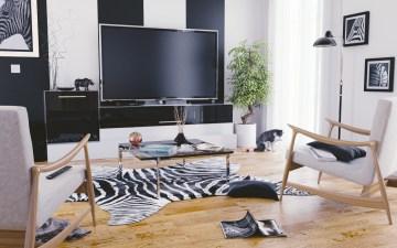 jerome-grandsire-zebre