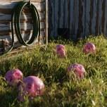 iwo-pilc-backyard