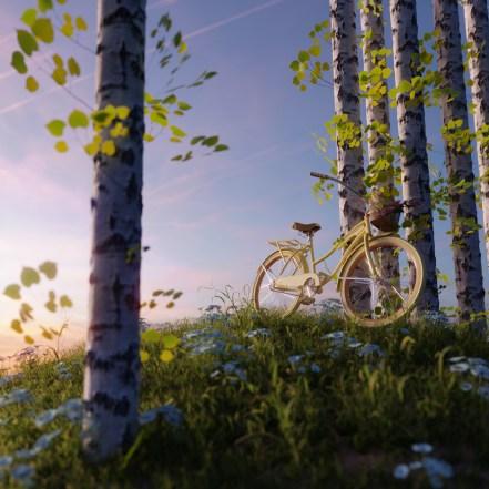 iwo-pilc-bike-on-a-hill