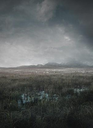 Landscape_Final_klein_Dunkel