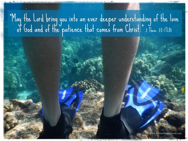 I long for a deeper understanding of God's love. How about you? http://wp.me/p2UZoK-EE via @blestbutstrest