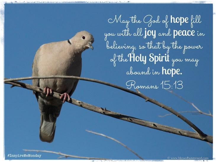 Holy Spirit Peace
